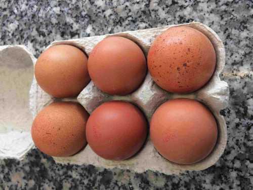 6 free range eggs locally sourced from robinsons farm at slaidburn